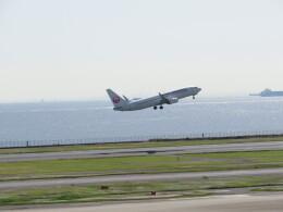 チャンギーVさんが、羽田空港で撮影した日本航空 737-846の航空フォト(飛行機 写真・画像)