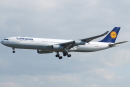 jun☆さんが、成田国際空港で撮影したルフトハンザドイツ航空 A340-313Xの航空フォト(飛行機 写真・画像)