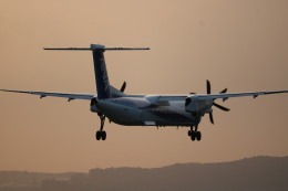 なかすぃ~さんが、伊丹空港で撮影したANAウイングス DHC-8-402Q Dash 8の航空フォト(飛行機 写真・画像)