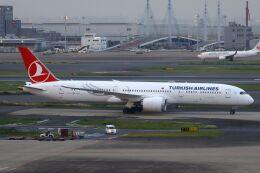 hiroki_h2さんが、羽田空港で撮影したターキッシュ・エアラインズ 787-9の航空フォト(飛行機 写真・画像)