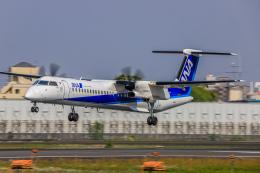 rokko2000さんが、伊丹空港で撮影したANAウイングス DHC-8-402Q Dash 8の航空フォト(飛行機 写真・画像)