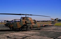 チャーリーマイクさんが、入間飛行場で撮影した陸上自衛隊 AH-1Sの航空フォト(飛行機 写真・画像)