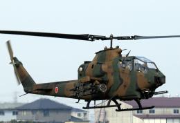 チャーリーマイクさんが、明野駐屯地で撮影した陸上自衛隊 AH-1Sの航空フォト(飛行機 写真・画像)