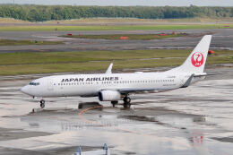 やまモンさんが、新千歳空港で撮影した日本航空 737-846の航空フォト(飛行機 写真・画像)