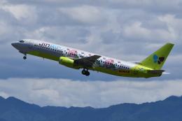 Deepさんが、関西国際空港で撮影したジンエアー 737-86Nの航空フォト(飛行機 写真・画像)
