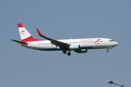 NIKEさんが、ロンドン・ヒースロー空港で撮影したオーストリア航空 737-8Z9の航空フォト(飛行機 写真・画像)