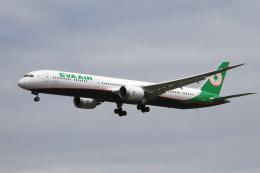 アルビレオさんが、成田国際空港で撮影したエバー航空 787-10の航空フォト(飛行機 写真・画像)