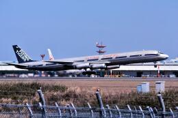 パール大山さんが、成田国際空港で撮影したフライング・タイガー・ライン DC-8-63AFの航空フォト(飛行機 写真・画像)