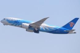 キイロイトリさんが、関西国際空港で撮影した中国南方航空 787-8 Dreamlinerの航空フォト(飛行機 写真・画像)