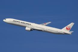 キイロイトリさんが、伊丹空港で撮影した日本航空 777-346の航空フォト(飛行機 写真・画像)