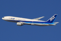 キイロイトリさんが、伊丹空港で撮影した全日空 777-281/ERの航空フォト(飛行機 写真・画像)