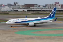 Koenig117さんが、福岡空港で撮影した全日空 737-881の航空フォト(飛行機 写真・画像)