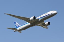 赤ちんさんが、成田国際空港で撮影した全日空 787-9の航空フォト(飛行機 写真・画像)