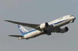木人さんが、成田国際空港で撮影した全日空 787-8 Dreamlinerの航空フォト(飛行機 写真・画像)