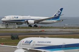 GNPさんが、那覇空港で撮影した全日空 787-8 Dreamlinerの航空フォト(飛行機 写真・画像)
