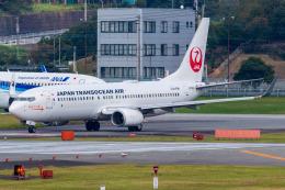 Yukio a.k.a Yu Worksさんが、福岡空港で撮影した日本トランスオーシャン航空 737-8Q3の航空フォト(飛行機 写真・画像)