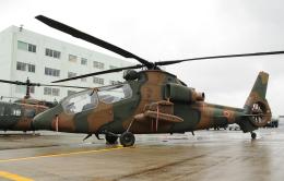 チャーリーマイクさんが、静浜飛行場で撮影した陸上自衛隊 OH-1の航空フォト(飛行機 写真・画像)