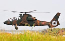 チャーリーマイクさんが、長崎空港で撮影した陸上自衛隊 OH-1の航空フォト(飛行機 写真・画像)