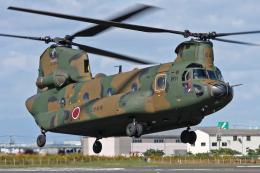スカルショットさんが、明野駐屯地で撮影した陸上自衛隊 CH-47JAの航空フォト(飛行機 写真・画像)