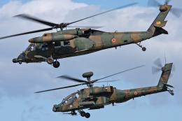 スカルショットさんが、明野駐屯地で撮影した陸上自衛隊 UH-60JAの航空フォト(飛行機 写真・画像)