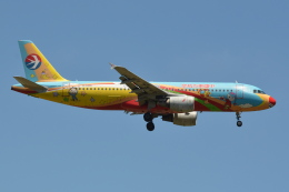 Deepさんが、成田国際空港で撮影した中国東方航空 A320-214の航空フォト(飛行機 写真・画像)