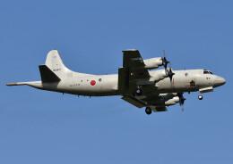じーく。さんが、厚木飛行場で撮影した海上自衛隊 P-3Cの航空フォト(飛行機 写真・画像)