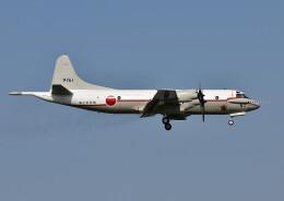 じーく。さんが、厚木飛行場で撮影した海上自衛隊 UP-3Cの航空フォト(飛行機 写真・画像)