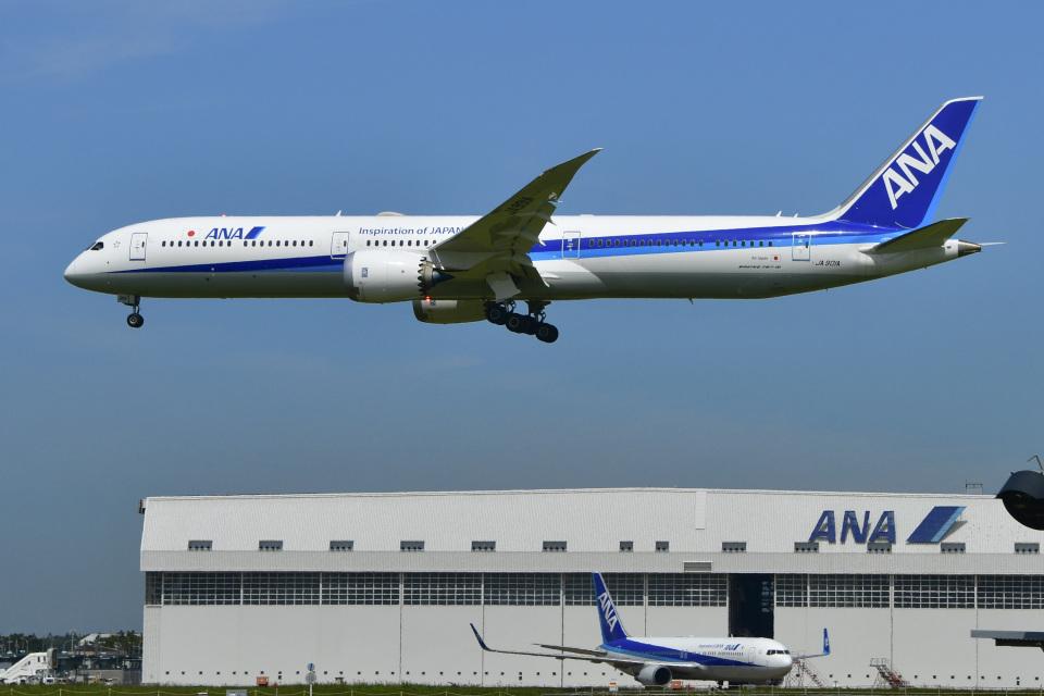 パンダさんの全日空 Boeing 787-10 (JA901A) 航空フォト