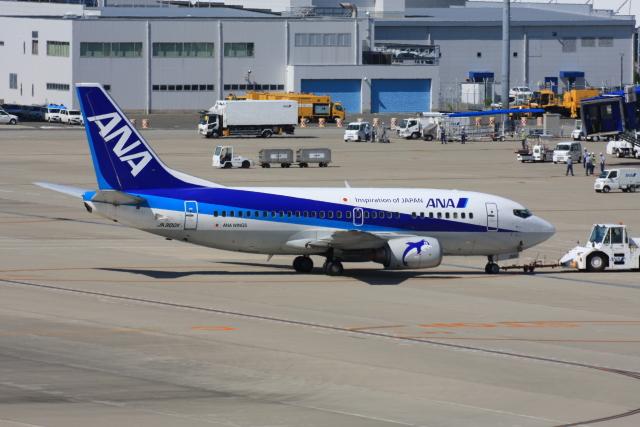 wunalaさんが、中部国際空港で撮影したANAウイングス 737-54Kの航空フォト(飛行機 写真・画像)
