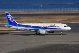 wunalaさんが、羽田空港で撮影した全日空 A320-211の航空フォト(飛行機 写真・画像)