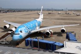 なごやんさんが、中部国際空港で撮影した全日空 A380-841の航空フォト(飛行機 写真・画像)