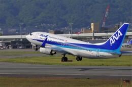 mild lifeさんが、伊丹空港で撮影した全日空 737-781の航空フォト(飛行機 写真・画像)