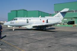 apphgさんが、浜松基地で撮影した航空自衛隊 U-125A (BAe-125-800SM)の航空フォト(飛行機 写真・画像)