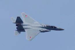 yabyanさんが、名古屋飛行場で撮影した航空自衛隊 F-15J Eagleの航空フォト(飛行機 写真・画像)