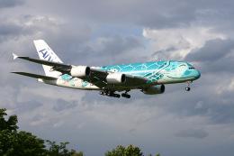 haru34さんが、成田国際空港で撮影した全日空 A380-841の航空フォト(飛行機 写真・画像)