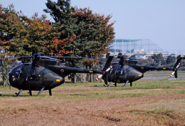 チャーリーマイクさんが、立川飛行場で撮影した陸上自衛隊 OH-6Dの航空フォト(飛行機 写真・画像)