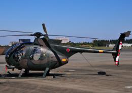 チャーリーマイクさんが、入間飛行場で撮影した陸上自衛隊 OH-6Dの航空フォト(飛行機 写真・画像)