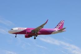 航空フォト:JA10VA ピーチ A320