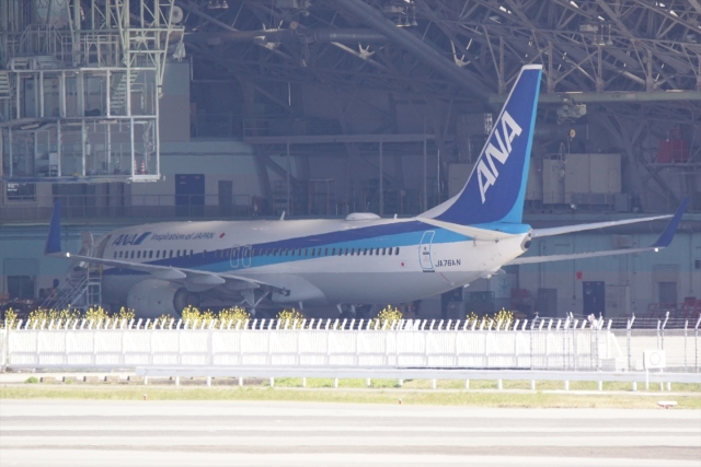 HEATHROWさんが、伊丹空港で撮影した全日空 737-881の航空フォト(飛行機 写真・画像)