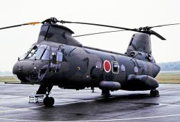 チャーリーマイクさんが、熊本空港で撮影した陸上自衛隊 KV-107II-4の航空フォト(飛行機 写真・画像)