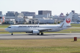 HEATHROWさんが、伊丹空港で撮影した日本航空 737-846の航空フォト(飛行機 写真・画像)