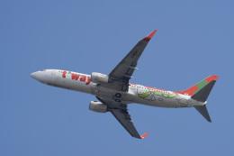 神宮寺ももさんが、関西国際空港で撮影したティーウェイ航空 737-8Q8の航空フォト(飛行機 写真・画像)