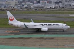 aki241012さんが、福岡空港で撮影した日本航空 737-846の航空フォト(飛行機 写真・画像)