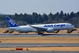 あまるめさんが、成田国際空港で撮影した全日空 777-F81の航空フォト(飛行機 写真・画像)