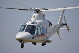 あまるめさんが、東京ヘリポートで撮影した日本法人所有 A109E Powerの航空フォト(飛行機 写真・画像)