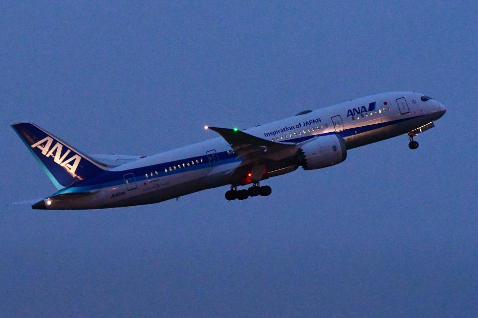 TOPAZ102さんの全日空 Boeing 787-8 Dreamliner (JA804A) 航空フォト