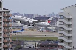 mild lifeさんが、伊丹空港で撮影した日本航空 787-8 Dreamlinerの航空フォト(飛行機 写真・画像)