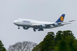 mameshibaさんが、成田国際空港で撮影したルフトハンザドイツ航空 747-830の航空フォト(飛行機 写真・画像)