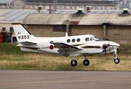 なごやんさんが、名古屋飛行場で撮影した海上自衛隊 LC-90 King Air (C90)の航空フォト(飛行機 写真・画像)