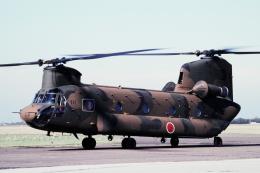 チャーリーマイクさんが、木更津飛行場で撮影した陸上自衛隊 CH-47Jの航空フォト(飛行機 写真・画像)